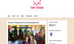 2014.11.06 Tiny Spark podcast